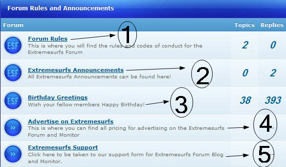 Extremesurfs  Extremesurfs11.jpg